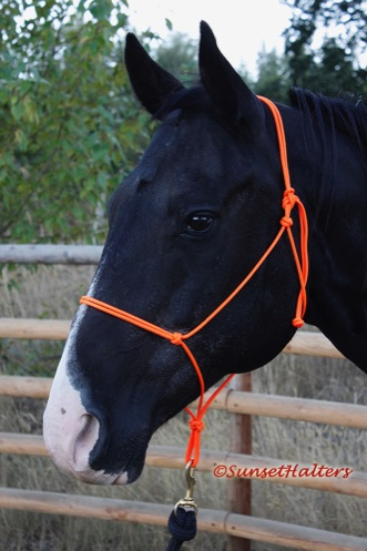 accessory cord, rope halter, rope halters, halter
