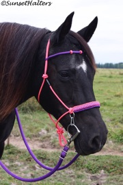 halter cord, Hope Rope Halter,  halter bridle, rope halter, trail riding