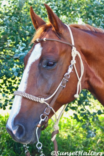 Hope Rope Halter, rope halter, halter, bridle, trail riding, halter cord
