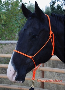 accessory cord, rope halter