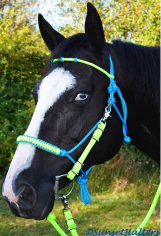 rope halter, yacht braid, halter bridle, bridle, trail riding