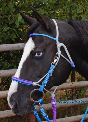 yacht braid, rope, rope halter, halter bridle, trail riding, trail bridle