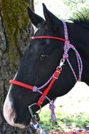diamond braid rope halter bridle