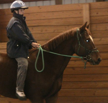yacht braid roping reins